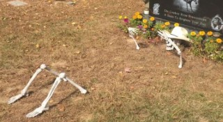 Parents decorate son's grave with skeleton, cemetery yanks it